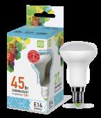 LED-R50-econom 5.0 Вт (220~240В, E14, 400Лм, 4000К)